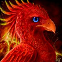 Thread Contributor: Phoenix